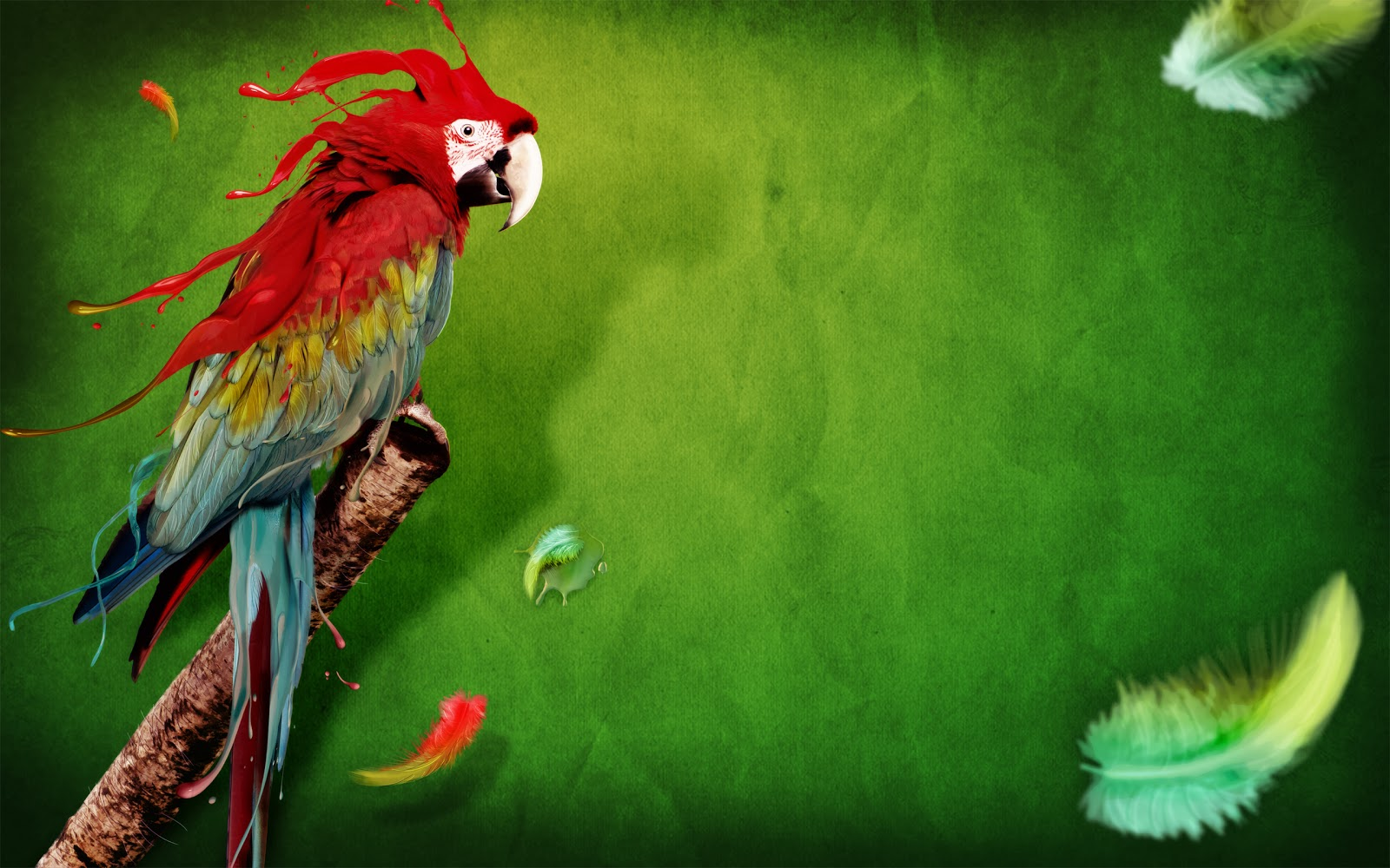 Animals Wallpapers | Birds Wallpapers | HD Desktop