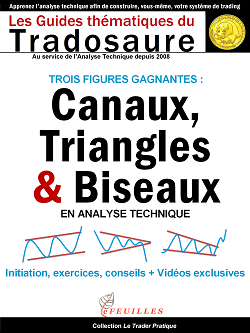 CANAUX_TRIANGLES_BISEAUX_ANALYSE_TECHNIQUE_TRADOSAURE