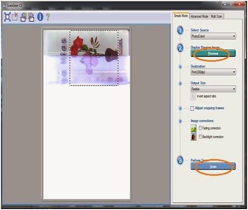 Cara Scan Gambar Photo Dengan Acdsee Pro Menggunakan Canoscan Lide 25 For Windows 7 8 Seni Rupa