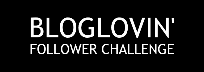 bloglovin follower challenge