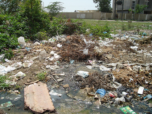 Plastic bags is bad for the environment - The Vongola Science Contaminaci 243 N Ambiental