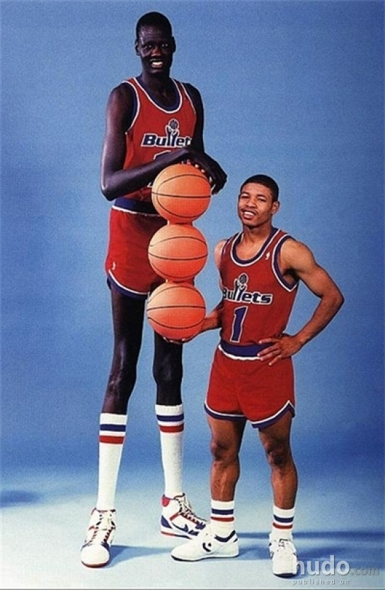 The Tallest Basketball Player