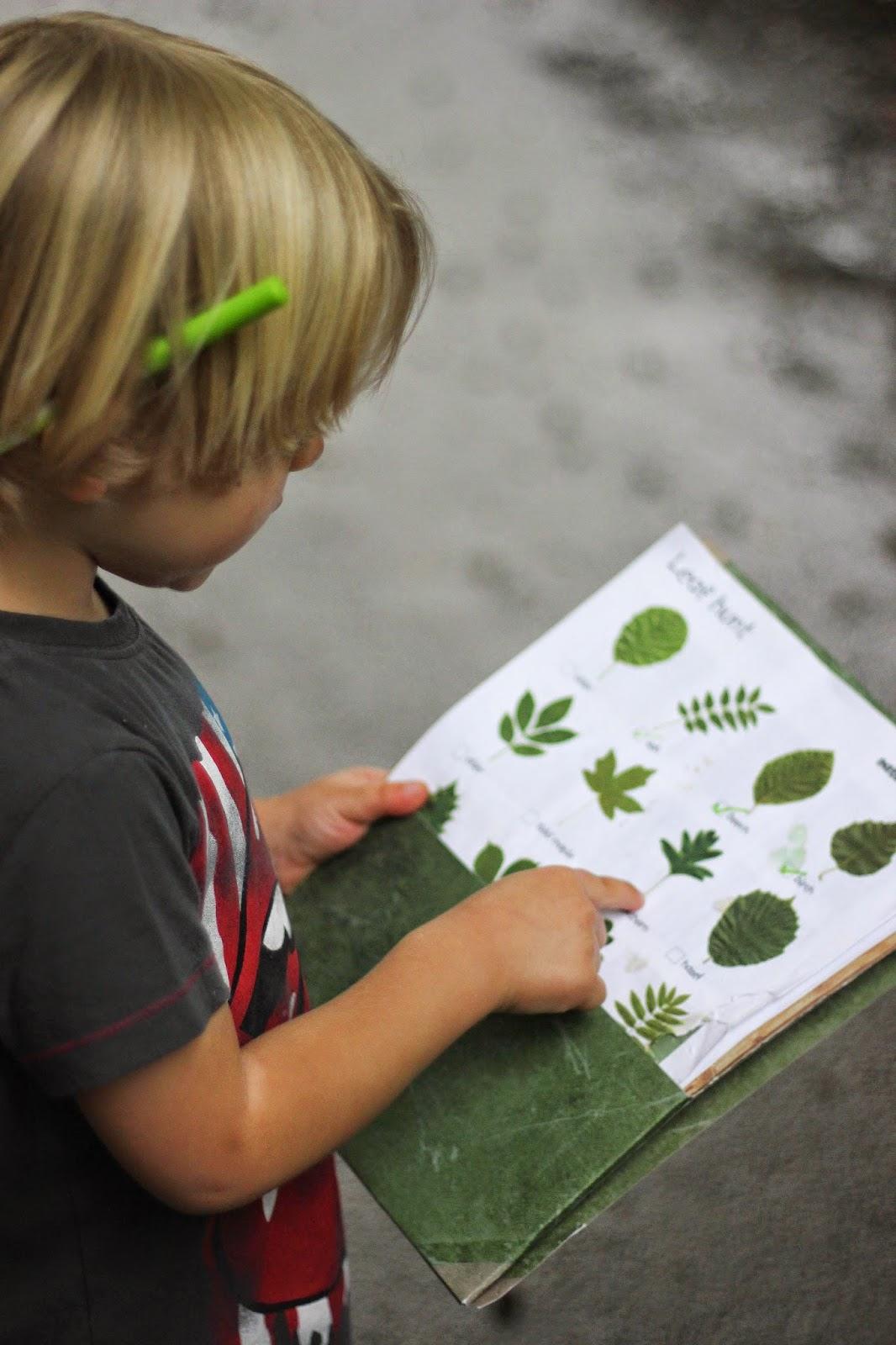 leaf spotter sheet