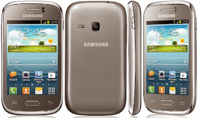 Samsung Galaxy Young Metallic Silver