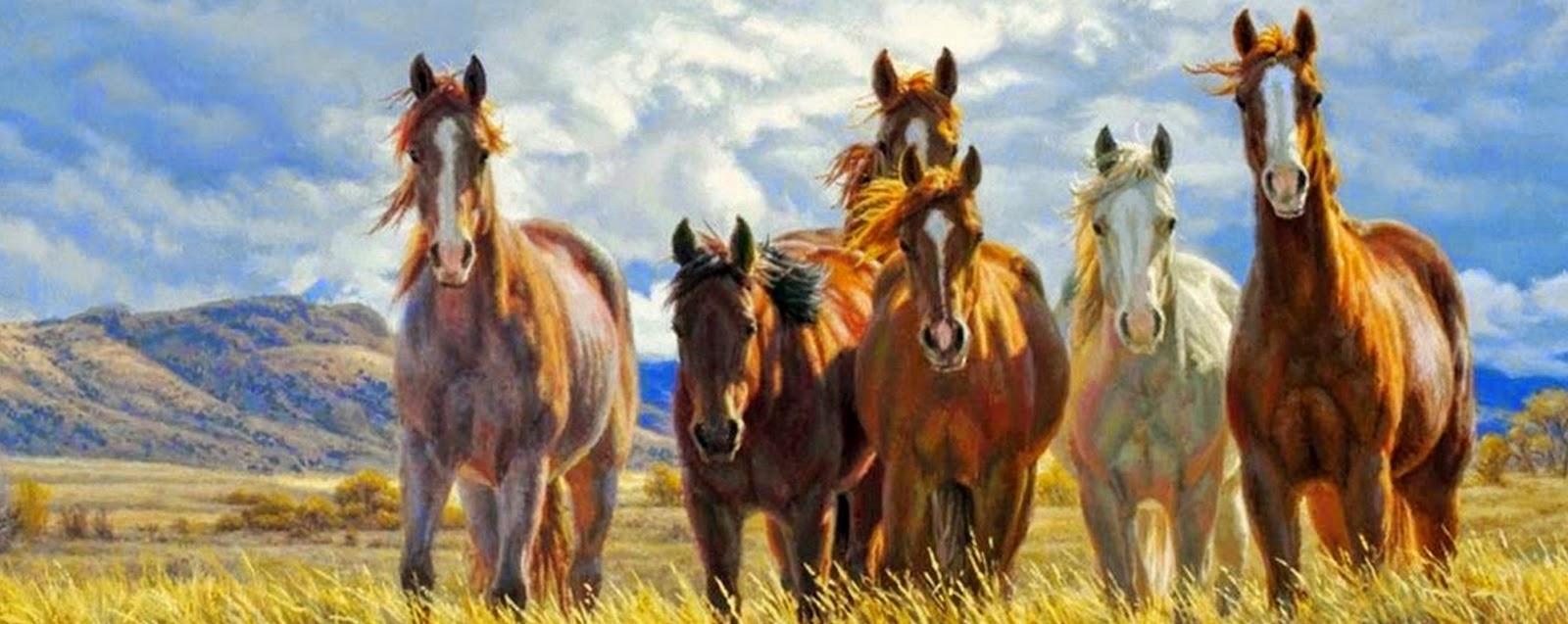 pinturas-y-fotos-de-caballos-salvajes