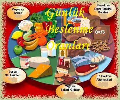 hangi besinlerde karbonhidrat, protein, yağ