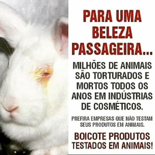 Este Blog boicota marcas que testam em animais