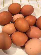 Jenny's Girls Eggs