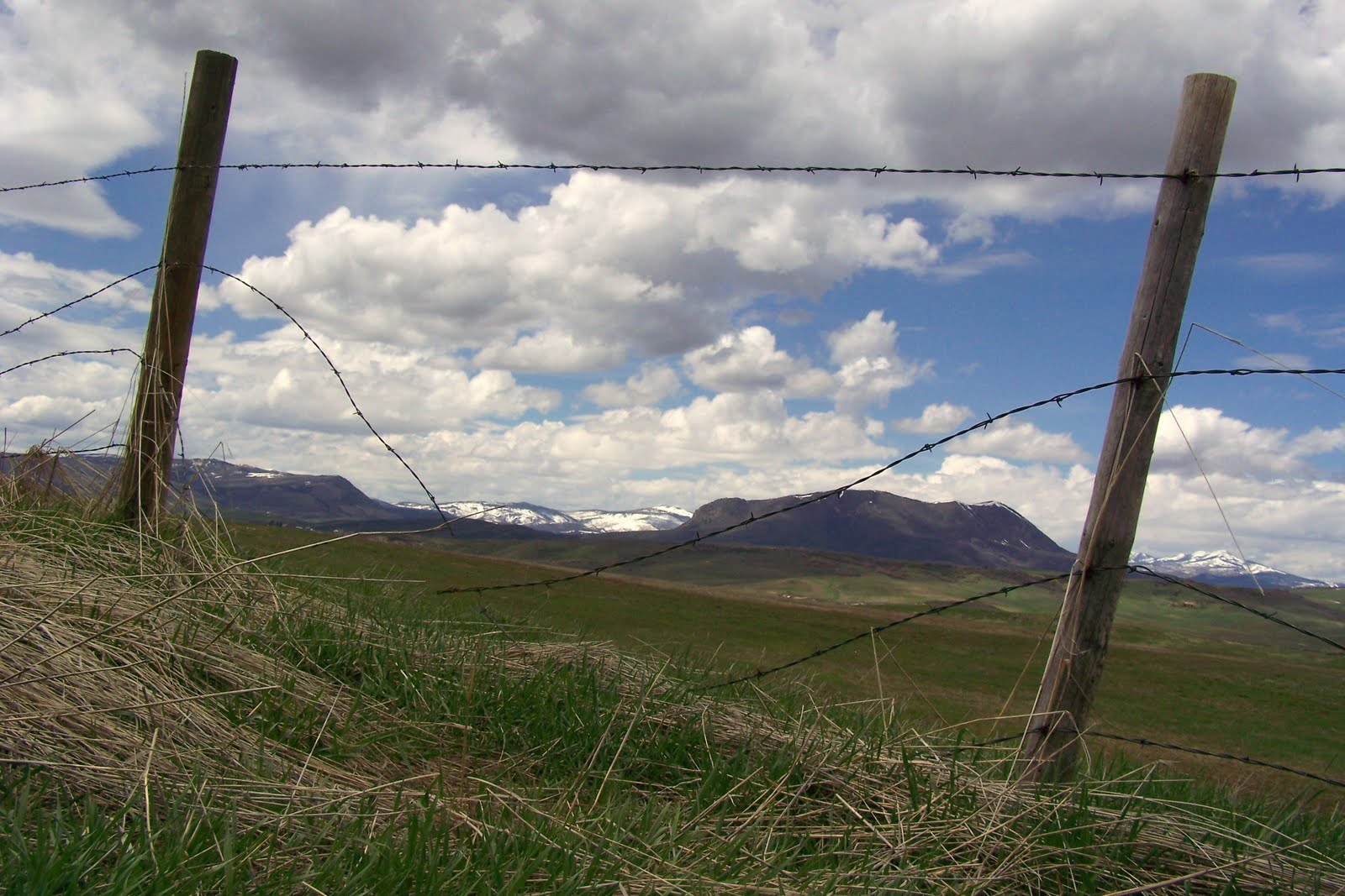 Meanwhile, Out at the Ranch: Fencing Season