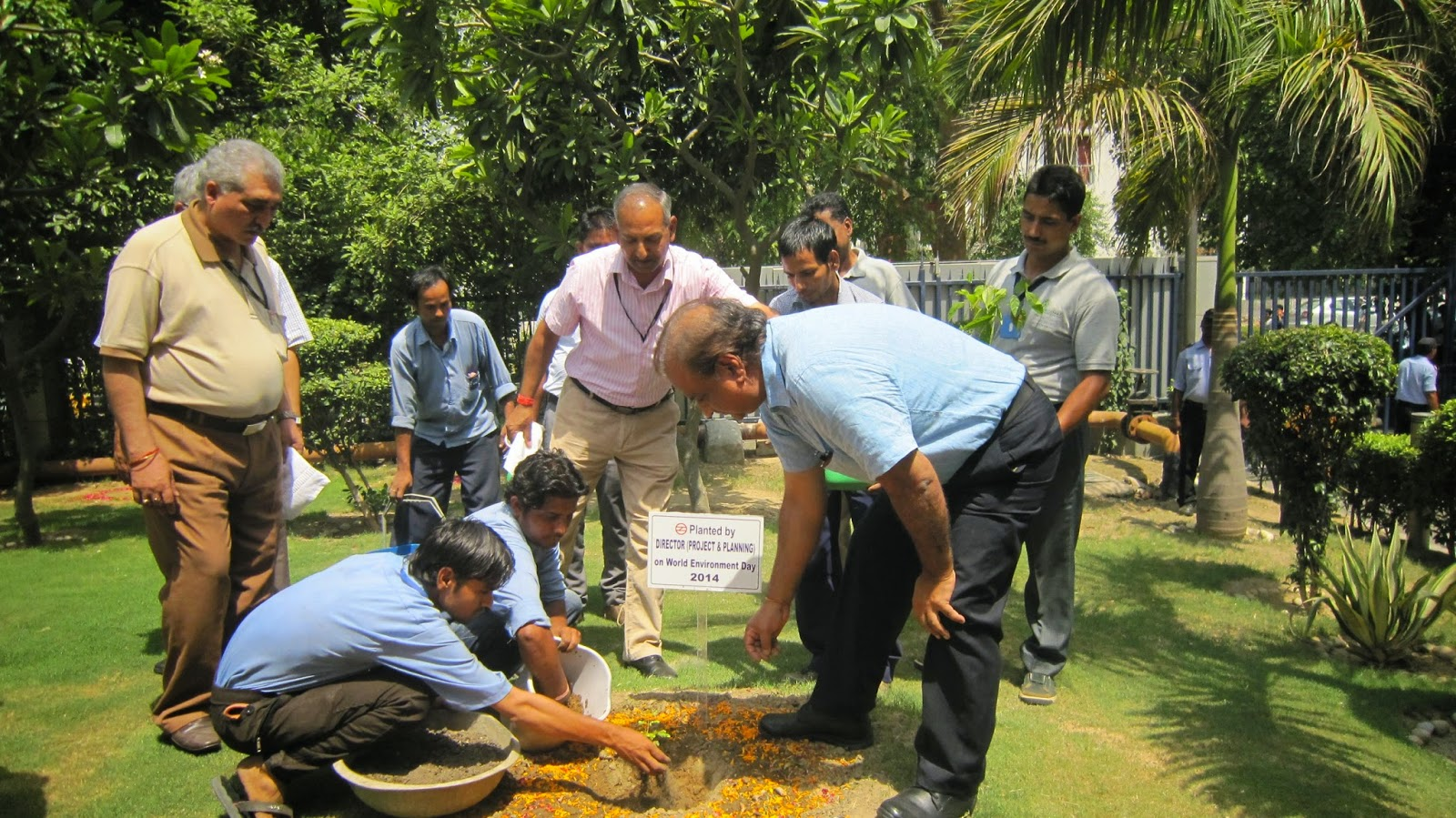 Sandal wood tree being planted by the Director Projects and Planning, DMRC
