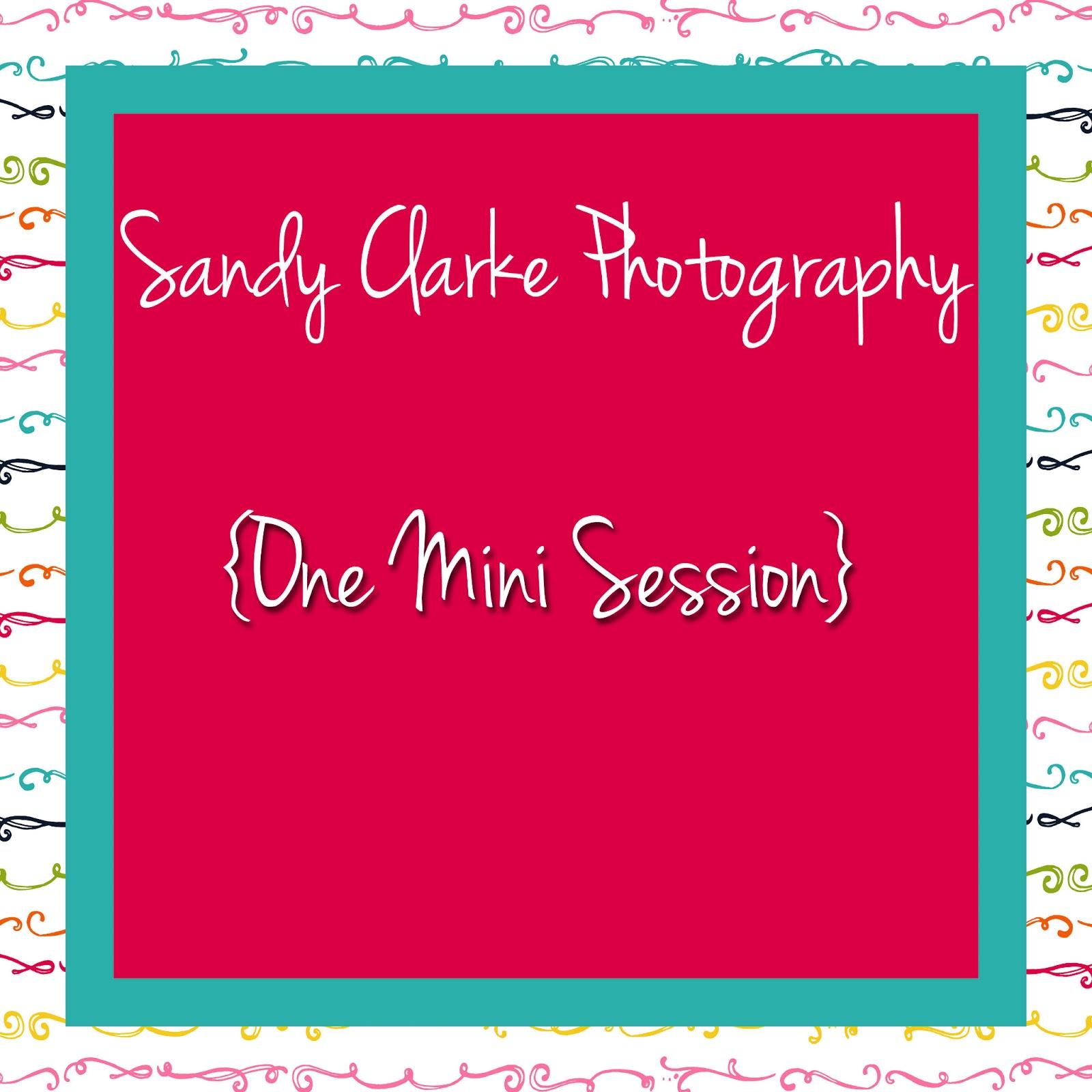 http://1.bp.blogspot.com/-KFtKOYeNZCE/USbkjxi9jhI/AAAAAAAACIw/JYQaU6JF9s0/s1600/Sanyd+Clarke+Photography.jpg
