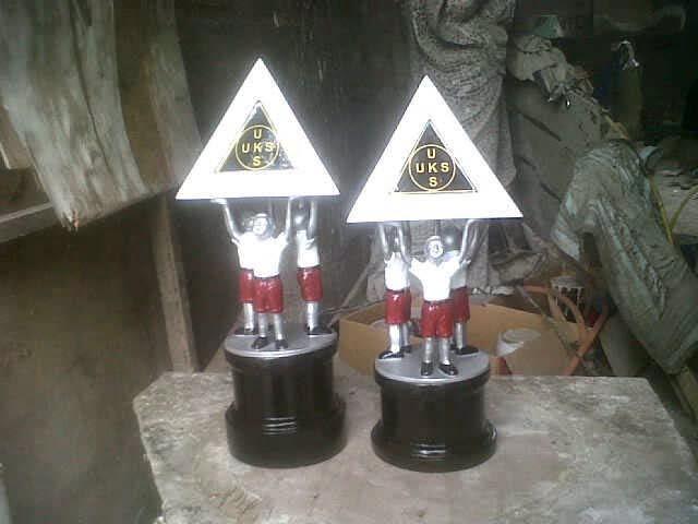 trophy uks sekolah dasar