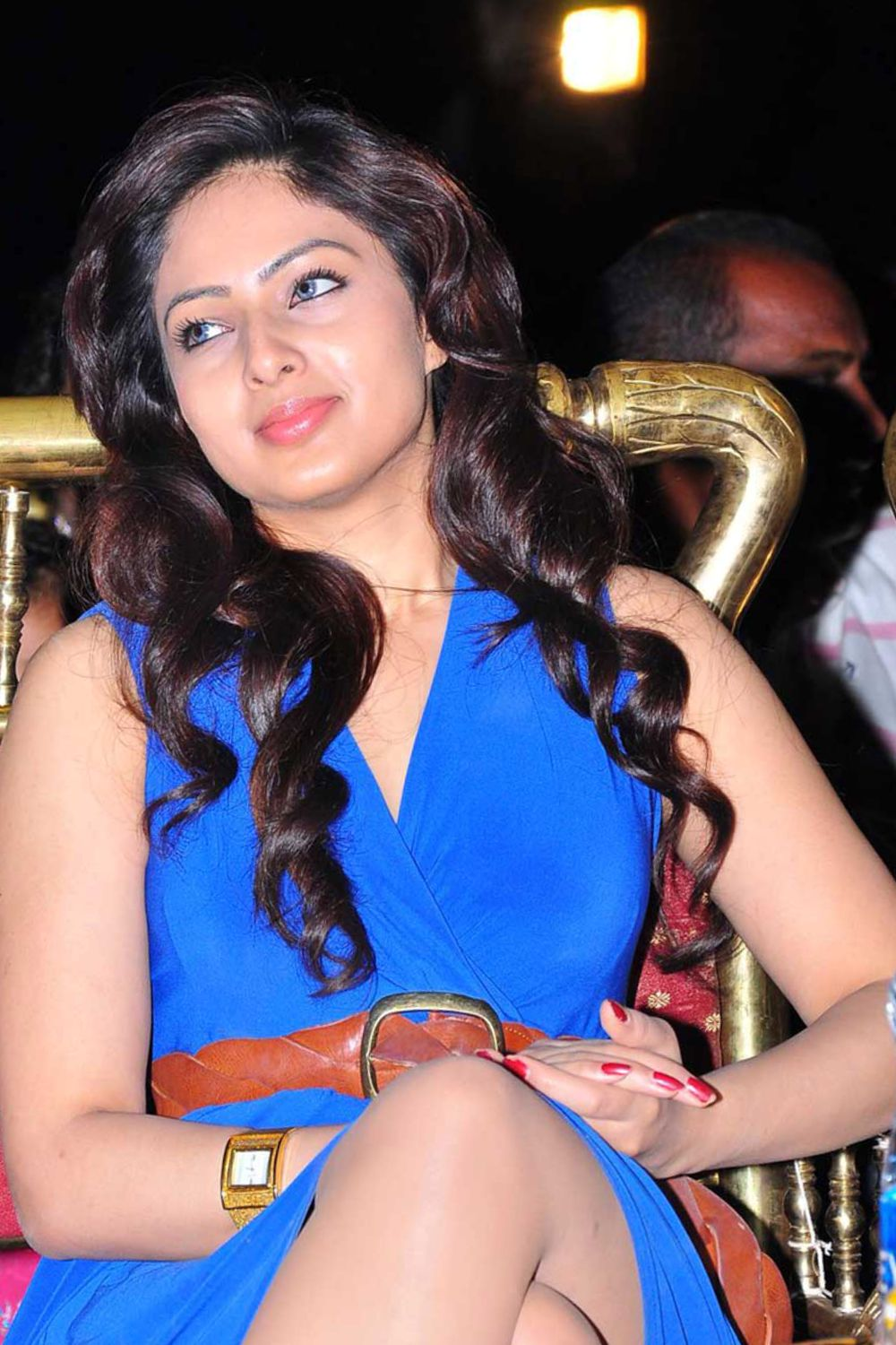 Nikesha Patel Gujarati Actress in Telugu Cinema