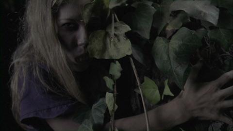 Vampire girl in van helsing 2