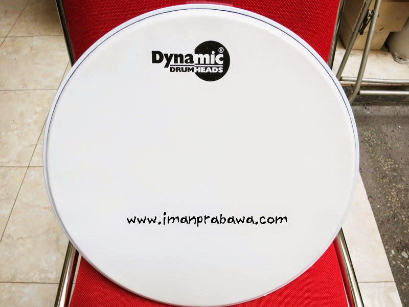 Dynamic Drum Head Single Ply Coated