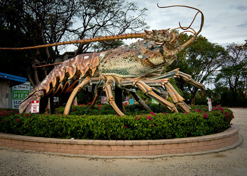 Me On The East Coast Our Giant Lobster Can Beat Your