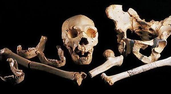Arkeologi Menemukan DNA Manusia Berusia 400.000 Tahun