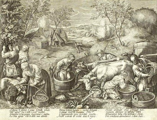 Vendanges de Jacques Callot