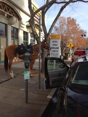 Parking Violation In Midtown