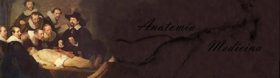 MEDICINA - ANATOMIA