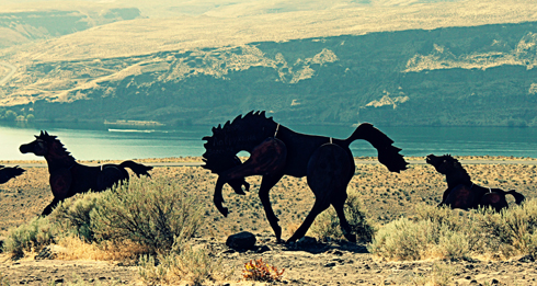 Wild Horses Monument In Washington Editing Luke