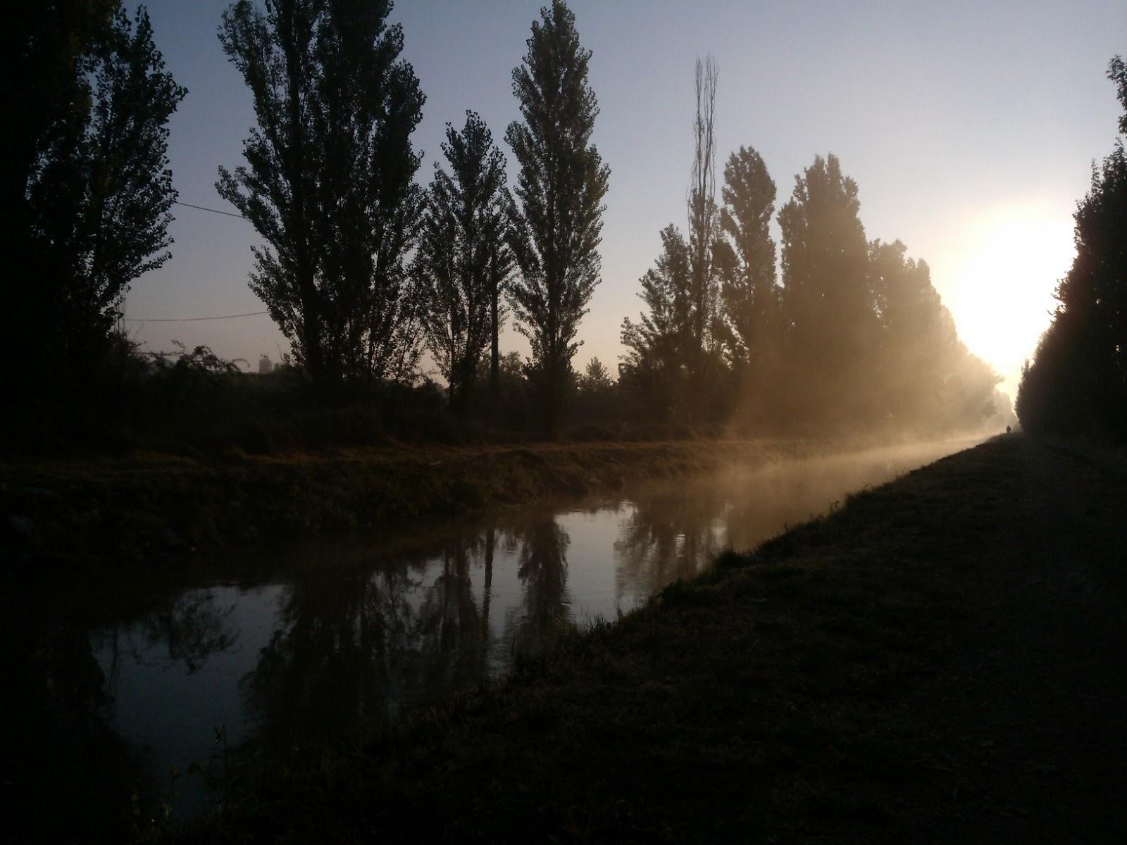 Canal del Duero pasando al lado de la huerta de la Regadera Verde al amanecer