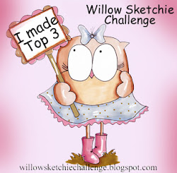 Top 3 Willow Sketchie Challenge
