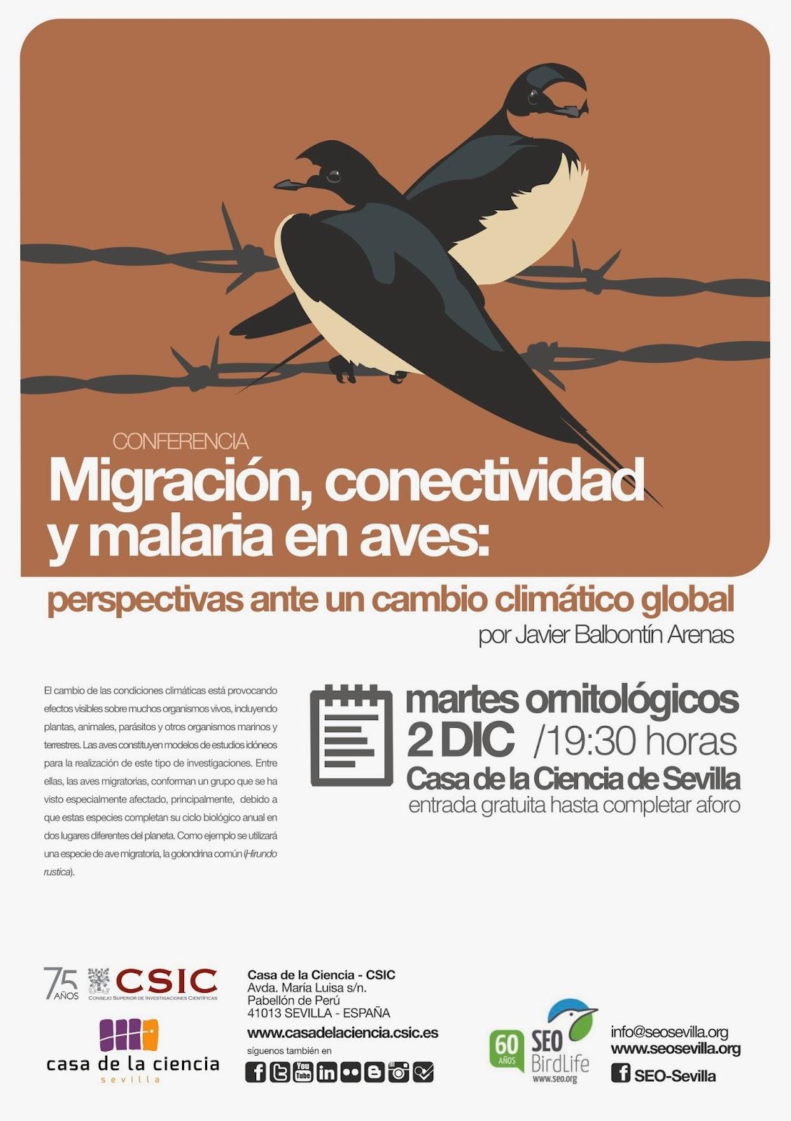 """Conferencia ornitológica organizada por el Grupo Local SEO-Sevilla de SEO/BirdLife en el museo Casa de la Ciencia de Sevilla. """"Migración, conectividad y malaria en aves"""". Por Javier Balbontín Arenas."""