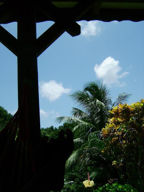 Summertime en Guadeloupe