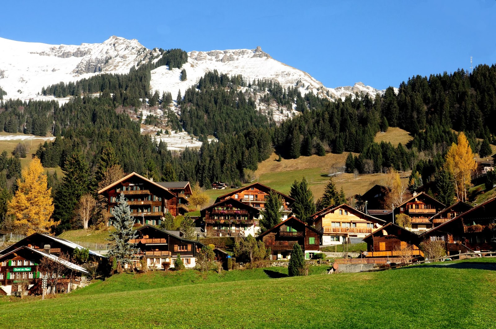 Les Diablerets Switzerland  city photo : les diablerets village glacier 3000