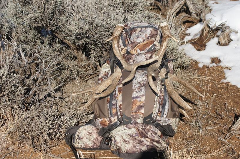 Southern Utah Hunt And Fish 2013 Shed Antler Season