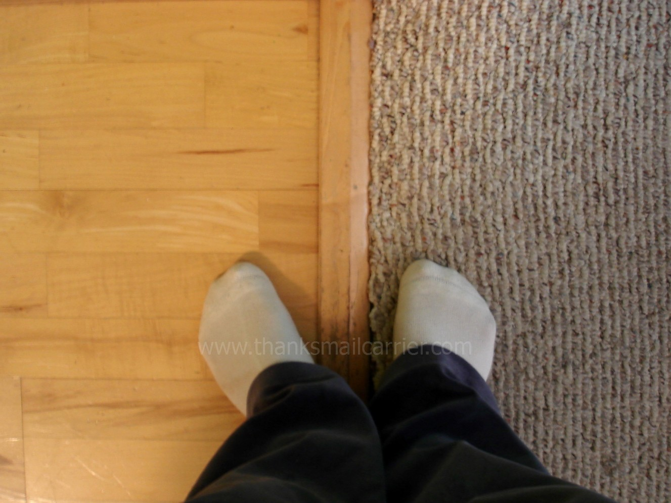 Thanks, Mail Carrier | Floors: Carpet, Wood, or Rug?