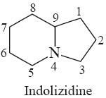 indolizidine alkaloids