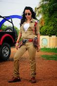 Nisha Kothari latest photos gallery-thumbnail-18