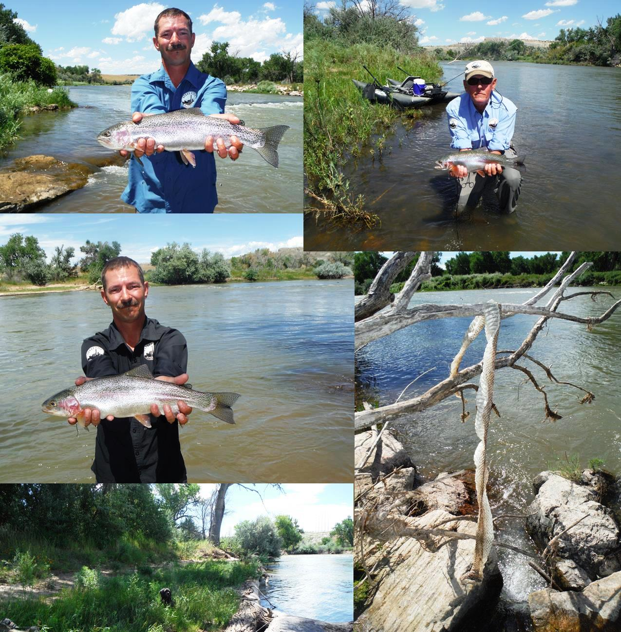 Arkansas river tailwater fly fishing report august 2015 for Fly fishing arkansas