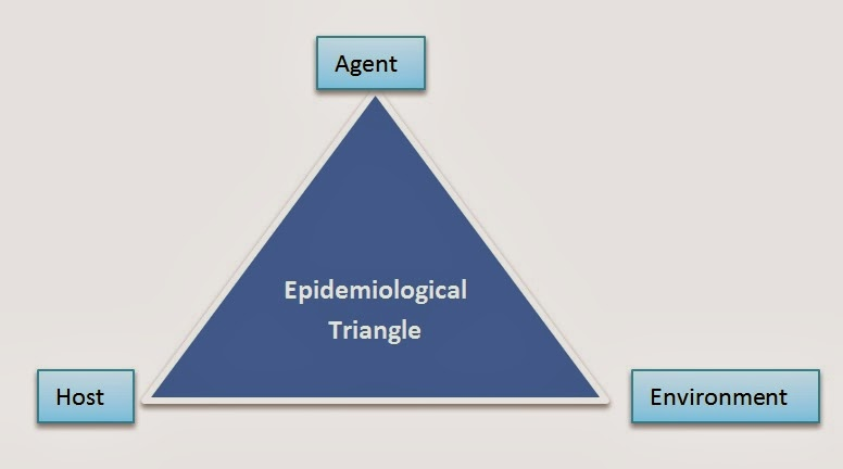 Epidemiological Triad
