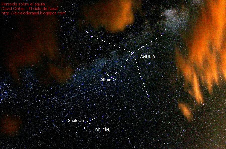 Aguila delfin - El cielo de Rasal
