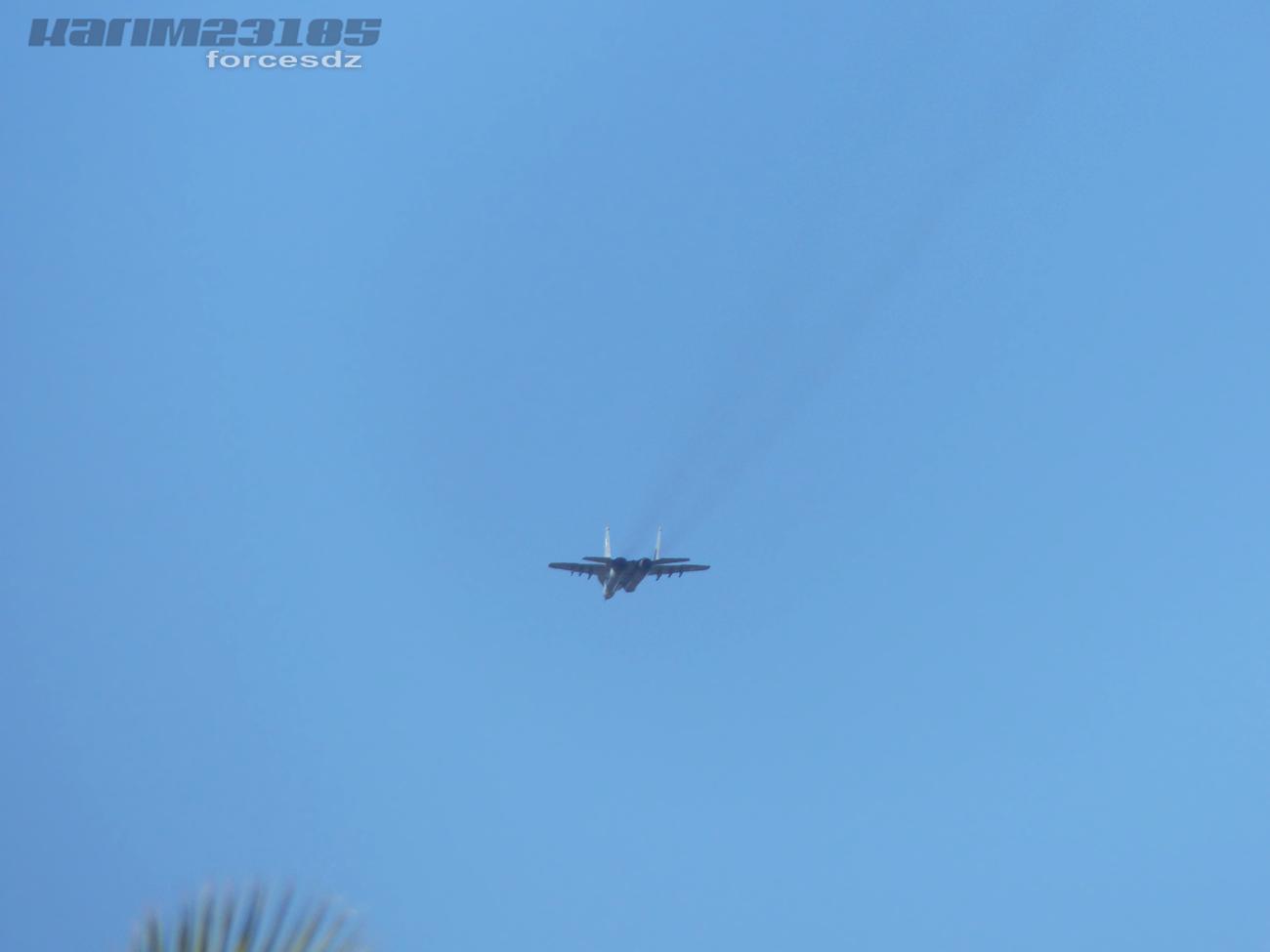 صور طائرات القوات الجوية الجزائرية  [ MIG-29S/UB / Fulcrum ] 8