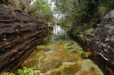 color water crystal river 06 Sungai Kristal   Sungai tercantik di Dunia (16 Gambar)
