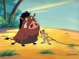 Timon e Pumba