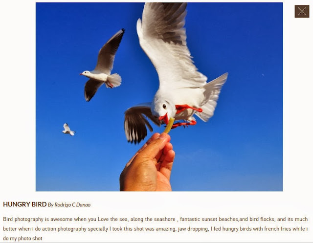 """One of the submission for """"Explore to Inspire"""" Photo contest by National Geographic Channel & Canon"""