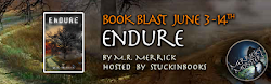 Endure is out!