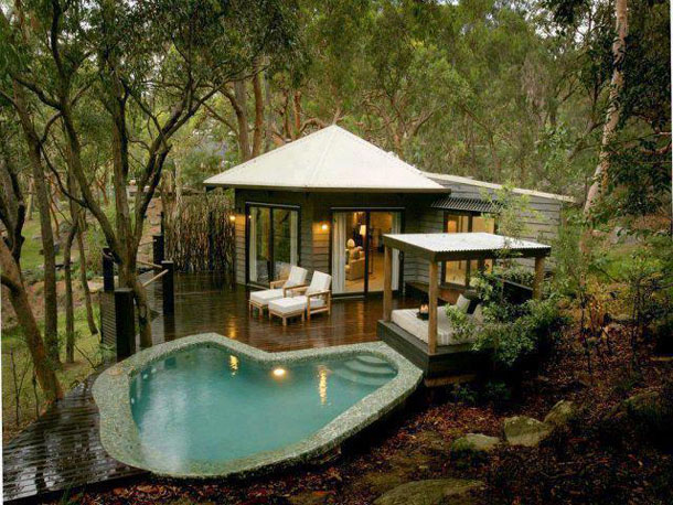 Cool Forest Dream House