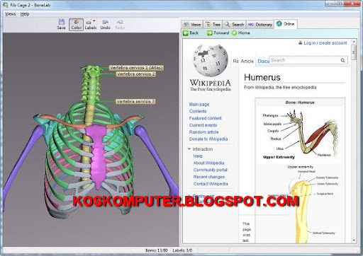 Anatomy software free
