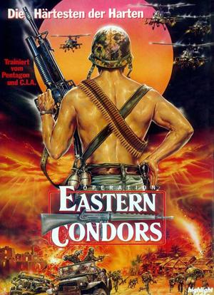 Phi Ưng Phương Đông Vietsub - Eastern Condors Vietsub