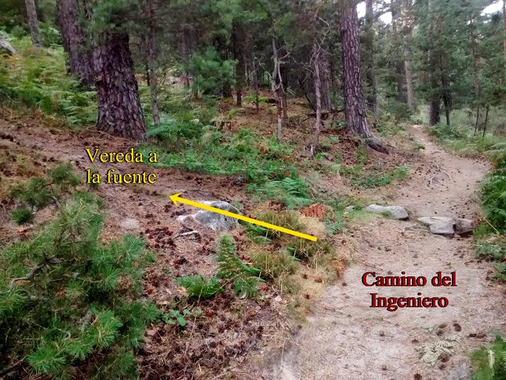 Fuente del Acebo - Alfonsoyamigos