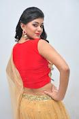 yamini bhaskar latest glam pics-thumbnail-18