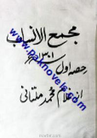 Majma ul Ansab  by Ghulam Muhammad Multani