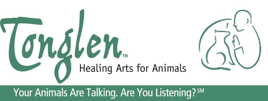 Tonglen Healing Arts for Animals