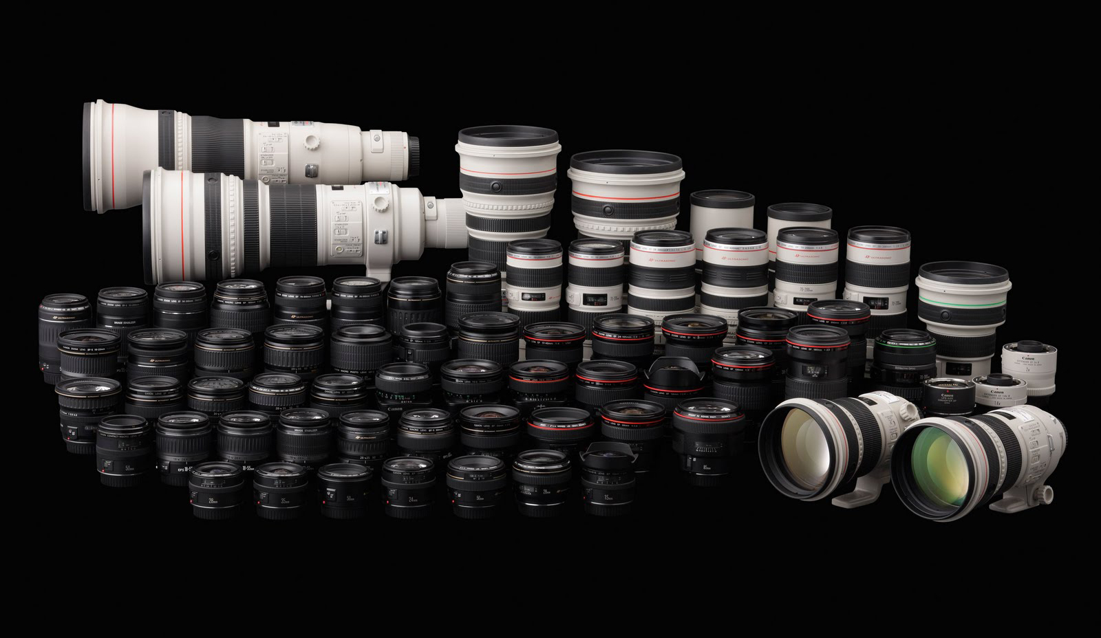 Michael Daniel Ho The Wildlife Tographer Canon Ef 200mm F 2l Tamron 18 35 63 Di Iii Vc Lens For M Is Ii And 800mm 56l